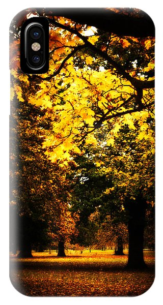 Autumnal Walks IPhone Case