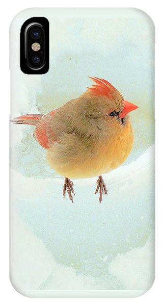 Baby Female Cardinal IPhone Case