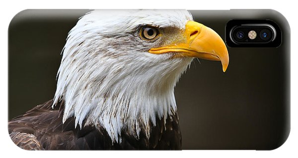 Majestic Bald Eagle  IPhone Case