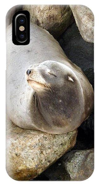 Basking IPhone Case