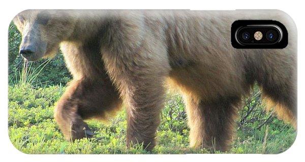 Bear At Denali IPhone Case