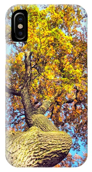 Beautiful Autumn Landscape IPhone Case