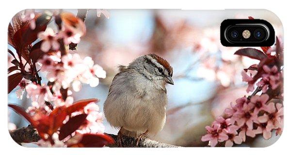Beautiful Sparrow IPhone Case