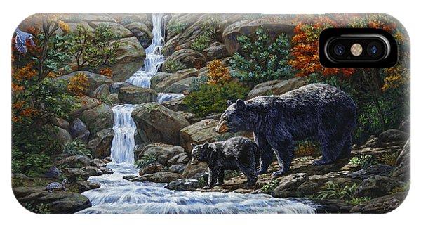 Bear Creek iPhone Case - Black Bear Falls by Crista Forest