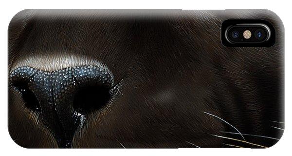 Soulful iPhone Case - Black Leopard by Jurek Zamoyski