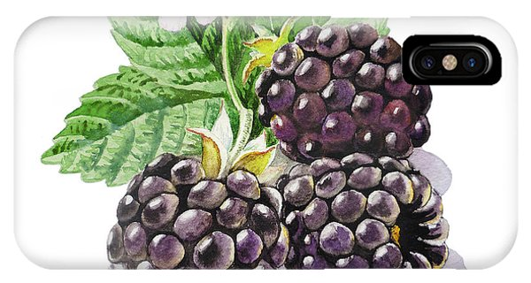 Artz Vitamins Series The Blackberries IPhone Case