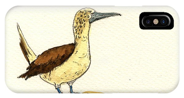 Boobies iPhone Case - Blue Footed Booby by Juan  Bosco