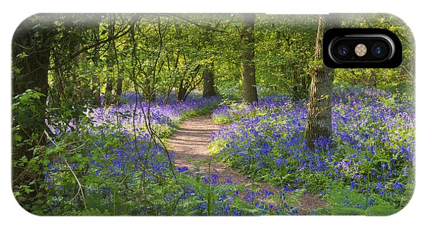 Bluebell Woods Walk IPhone Case