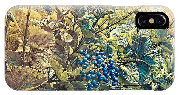 Blueberries IPhone Case