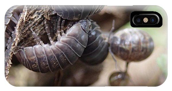 Bug Life IPhone Case