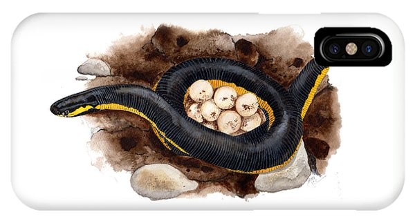Caecilian IPhone Case