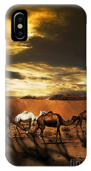 East Africa iPhone Case - Camels by Jelena Jovanovic