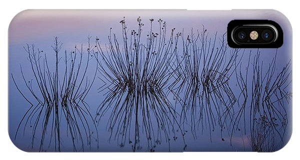 Cape May Meadows IPhone Case
