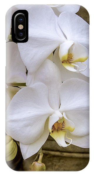 Cascade Of White Orchids IPhone Case
