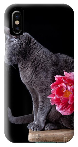 Purebred iPhone Case - Cat And Tulip by Nailia Schwarz
