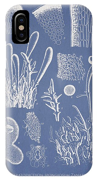 Alga iPhone X Case - Ceratodictyon Spongiosum Zanard by Aged Pixel