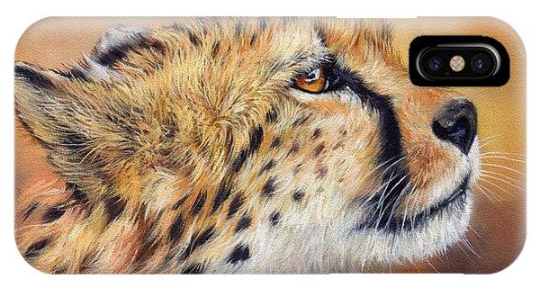 Cheetah iPhone Case - Cheetah by David Stribbling