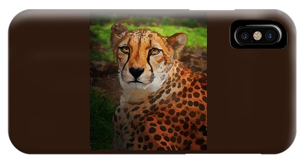 Cheetah Mama IPhone Case