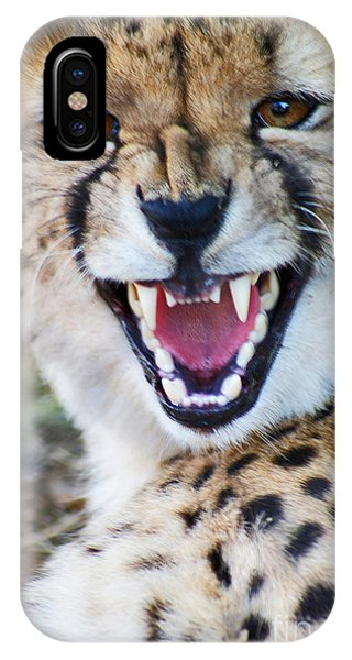 Cheetah With Attitude IPhone Case