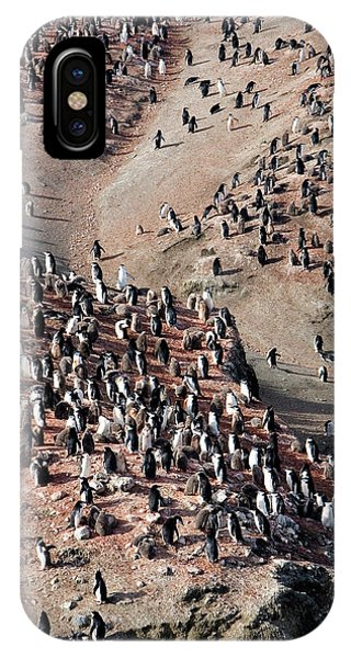 Chinstrap Penguin Colony Phone Case by William Ervin/science Photo Library
