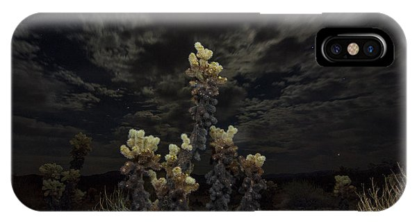 Opuntia Bigelovii iPhone Case - Cholla Light - Joshua Tree National Park by Jamie Pham