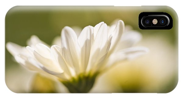 Chrysanthemum Flowers IPhone Case