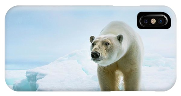 Close Up Of A Standing Polar Bear IPhone Case