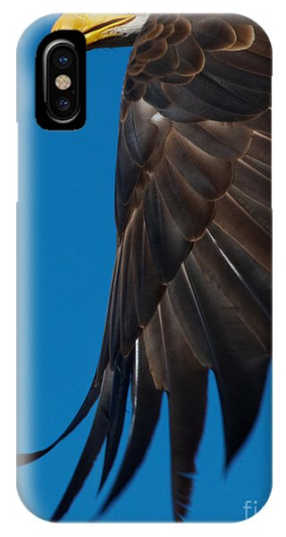 Close-up Of An American Bald Eagle In Flight IPhone Case