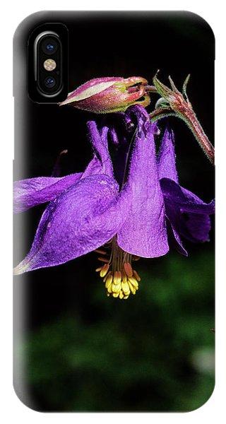 Aquilegia iPhone Case - Columbine (aquilegia Viscosa) by Bruno Petriglia/science Photo Library