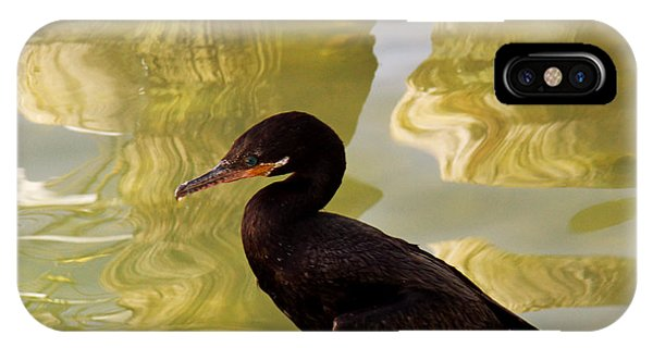 Cormorant IPhone Case