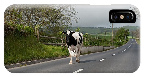 Cow Walks Along Country Road IPhone Case