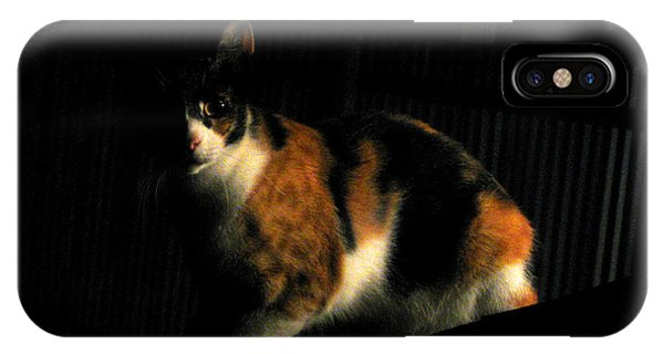 Creepy Kitty IPhone Case