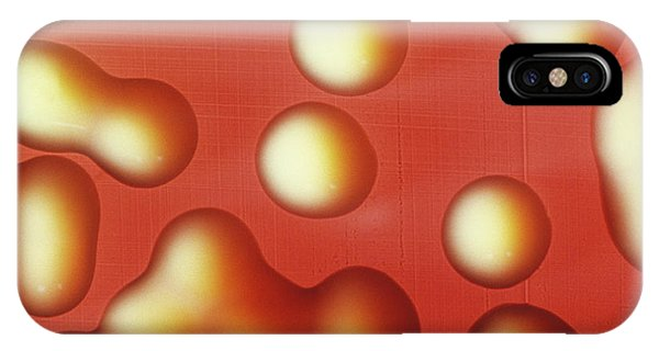 Micro-organisms iPhone Case - Cultured Pneumonia Bacteria by Cnri/science Photo Library