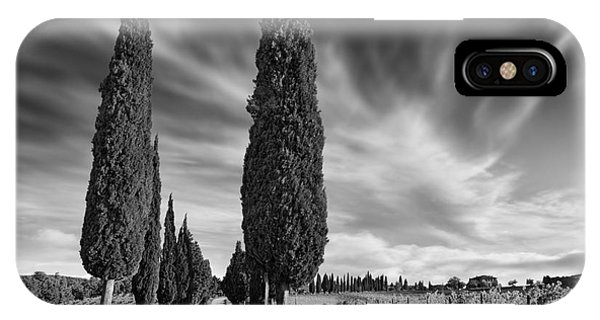 Cypress iPhone Case - Cypress Trees- Tuscany by Rod McLean
