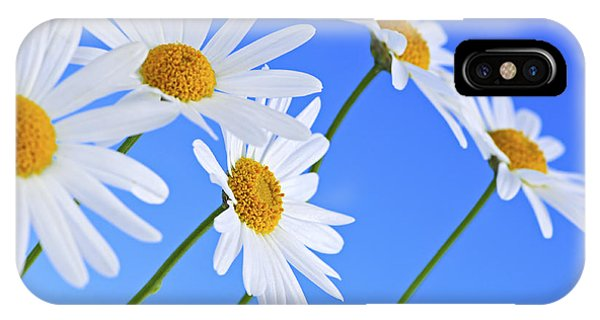 Floral iPhone Case - Daisy Flowers On Blue Background by Elena Elisseeva