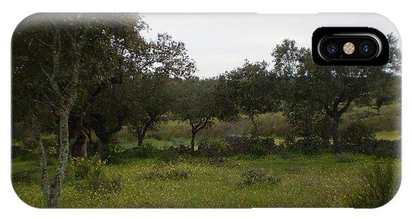 Dehesa In Extremadura IPhone Case