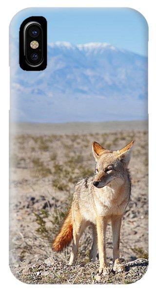 Desert Coyote  IPhone Case