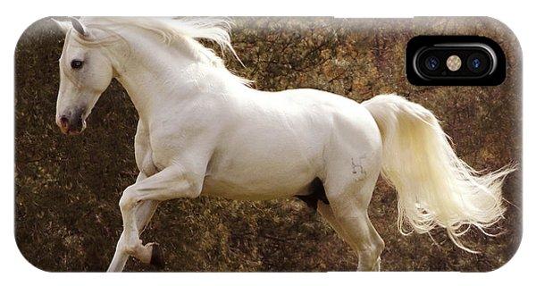 Dream Horse IPhone Case