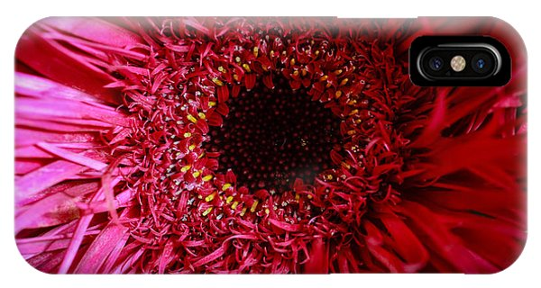 Dressy IPhone Case