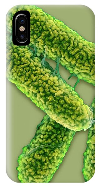 E. Coli Bacteria Phone Case by Science Photo Library