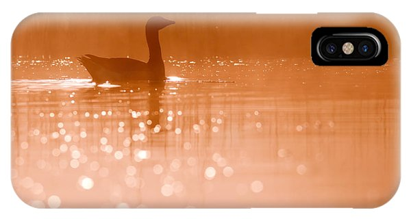 Pond iPhone Case - Early Morning Magic by Roeselien Raimond