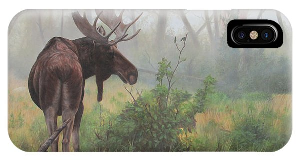 IPhone Case featuring the painting Early Morning Mist by Tammy Taylor