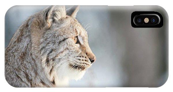 Lynx iPhone Case - Eurasian Lynx by Dr P. Marazzi/science Photo Library