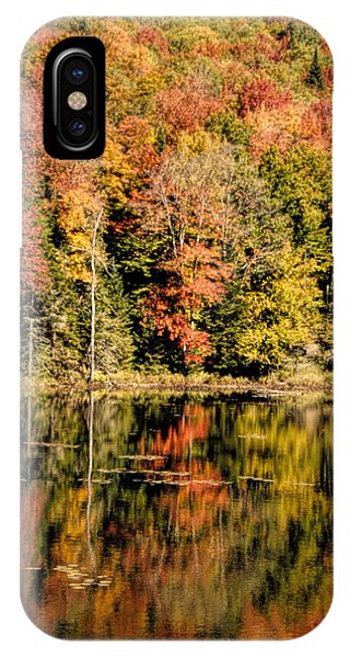 iPhone Case - Fall Colors by George Fredericks