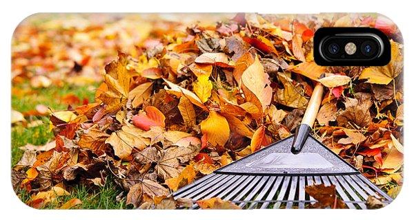 Leaf iPhone Case - Fall Leaves With Rake by Elena Elisseeva