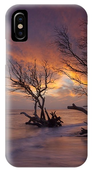 Fallen Trees Phone Case by James Roemmling