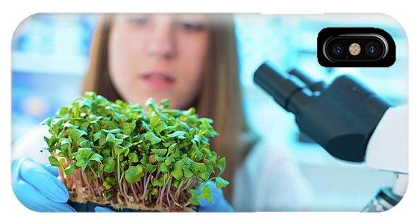 Female Biologist Holding Seedlings Phone Case by Wladimir Bulgar/science Photo Library