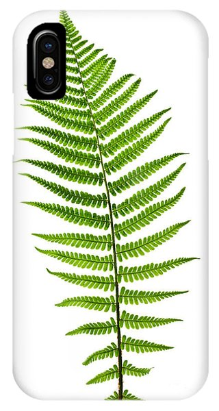 Fern Leaf IPhone Case