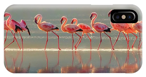 Flamingo Phone Case by Phillip Chang