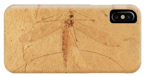 North London iPhone Case - Florissant Formation Insect Fossil by Natural History Museum, London/science Photo Library